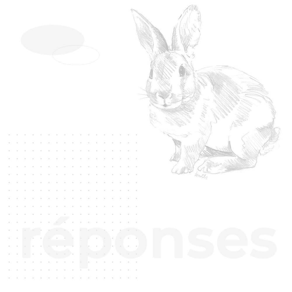 fond-FAQ2 Création de site Internet à Reims, Epernay, Paris  ⭐️