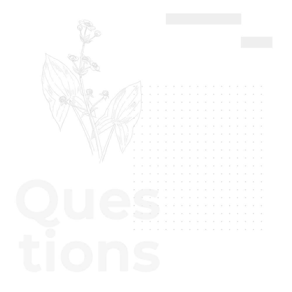 Questions création d'un site web